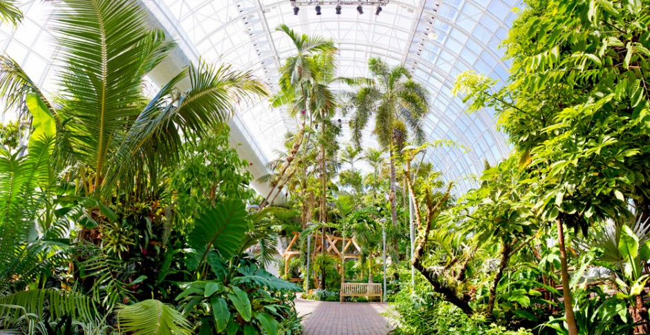 Myriad Botanical Gardens Panorama Gearworks Media